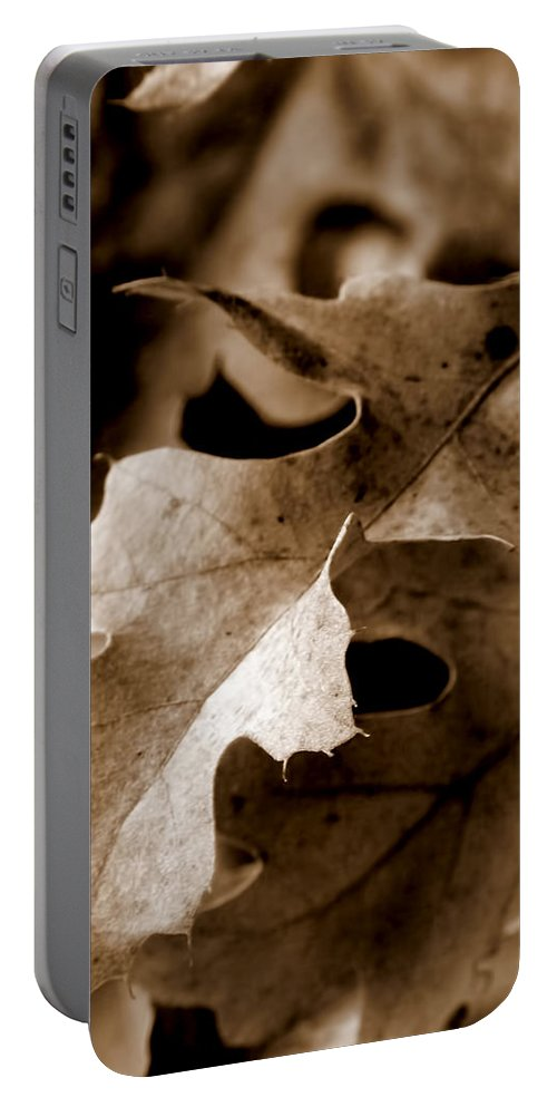 Macro Portable Battery Charger featuring the photograph Leaf Study In Sepia IIi by Lauren Radke