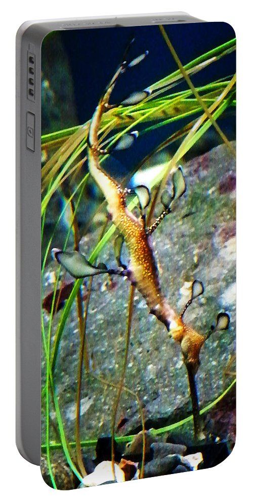 Paintings Portable Battery Charger featuring the photograph Leafy Sea Dragon by Anthony Jones