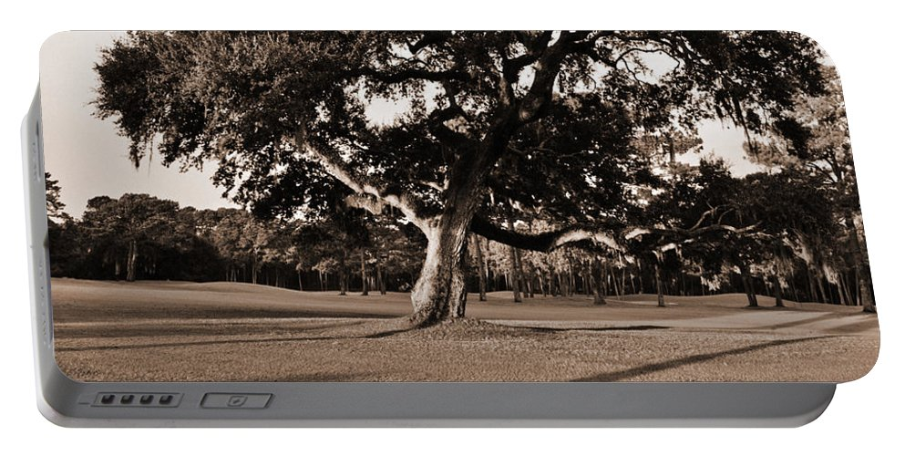 Black & White Portable Battery Charger featuring the photograph Leaning Tree by Phill Doherty