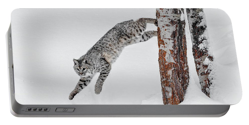 Leapin Bobcat Portable Battery Charger featuring the photograph Leapin Bobcat by Wes and Dotty Weber