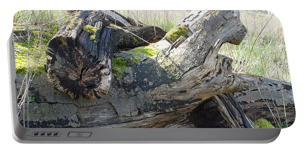 Tree Portable Battery Charger featuring the photograph Leave Us Be by Susan Baker