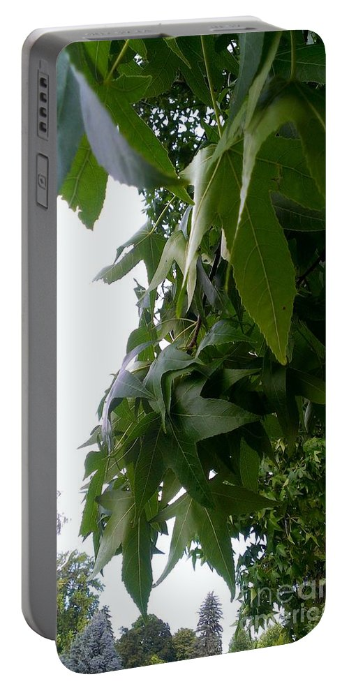 Terrace Heights Memorial Park Portable Battery Charger featuring the photograph Leaves In Memorial by LKB Art and Photography