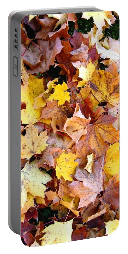 Leaves Portable Battery Charger featuring the photograph Leaves Of Fall by Rhonda Barrett
