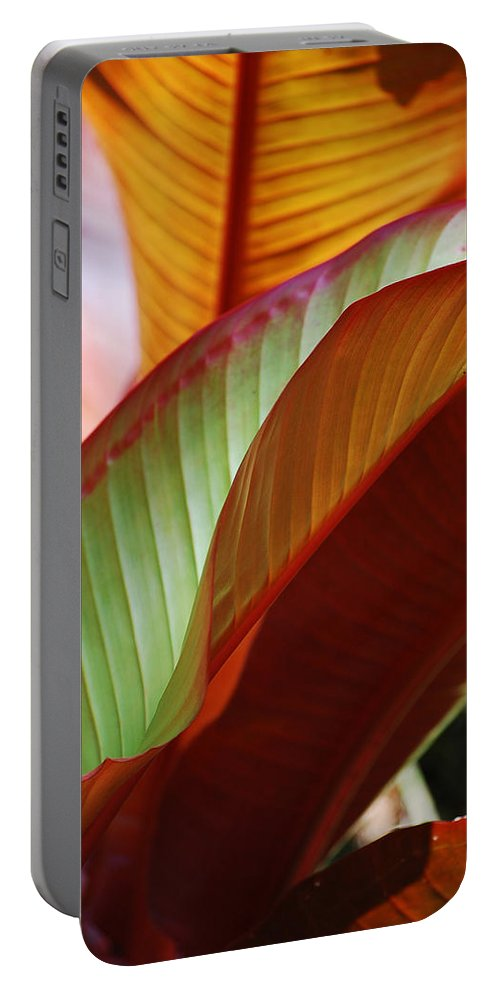 Leaves Portable Battery Charger featuring the photograph Leaves by Robert Meanor