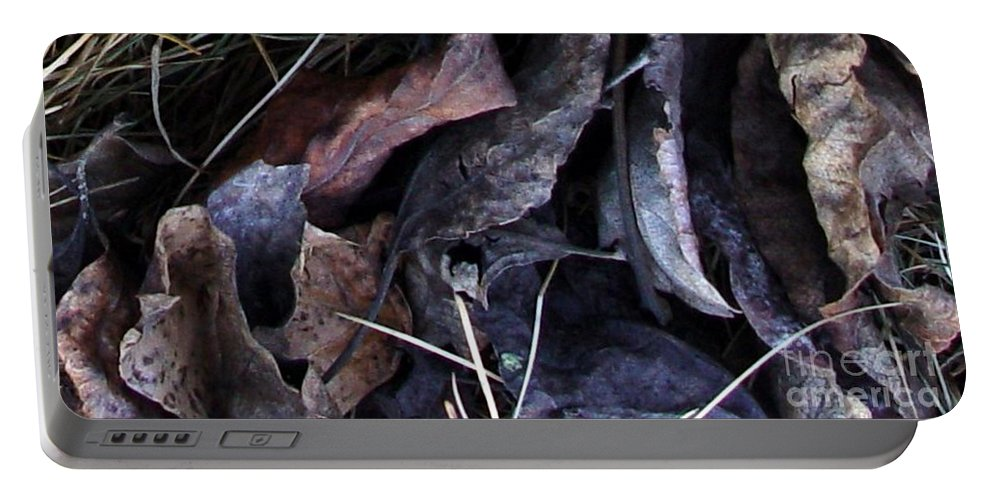 Leaves Portable Battery Charger featuring the photograph Leavings by Ron Bissett
