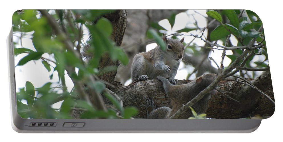Squirrel Portable Battery Charger featuring the photograph Lending A Helping Hand by Rob Hans