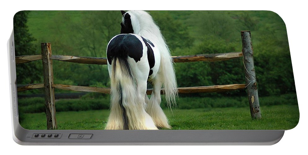 Gypsy Stallion Portable Battery Charger featuring the photograph Lenny by Fran J Scott