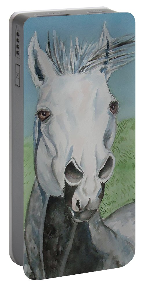 Not The Painter But A Grey Horse Portable Battery Charger featuring the painting Leonardo by Charme Curtin