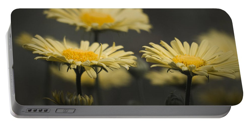 Leopards Portable Battery Charger featuring the photograph Leopards Bane Desaturated by Teresa Mucha