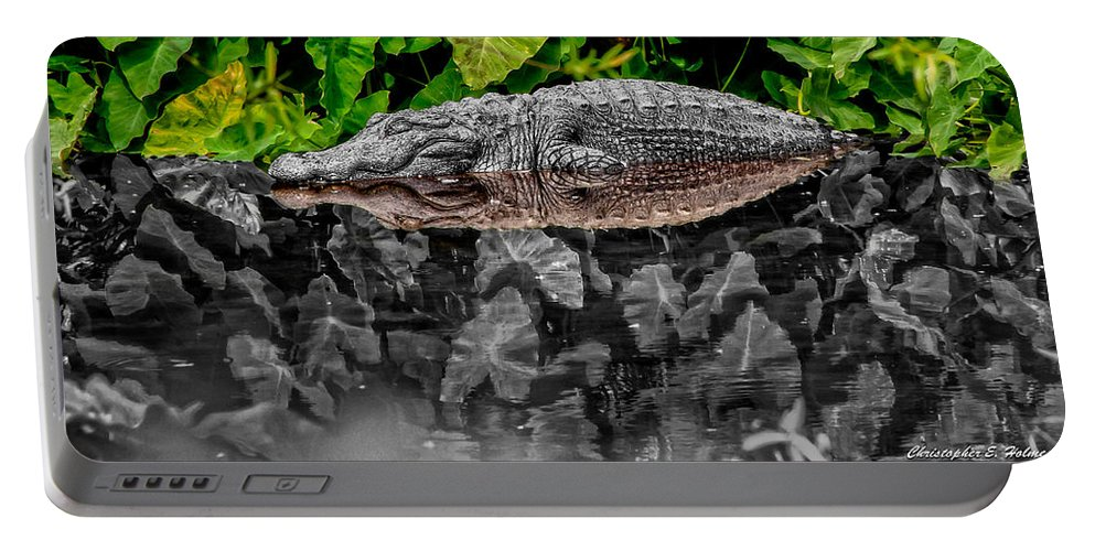 American Portable Battery Charger featuring the photograph Let Sleeping Gators Lie - Mod by Christopher Holmes