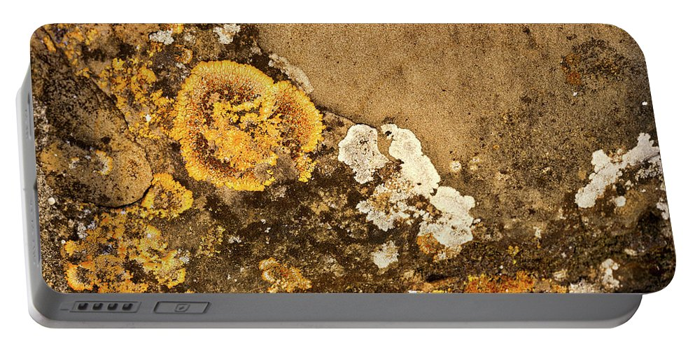 Piran Portable Battery Charger featuring the photograph Lichen On The Piran Walls by Stuart Litoff