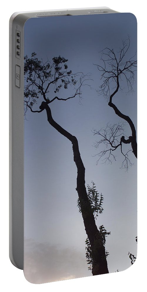 Tree Portable Battery Charger featuring the photograph Life And Death by Scott Sawyer
