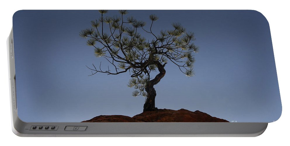Tree Portable Battery Charger featuring the photograph Life Force by David Lee Thompson