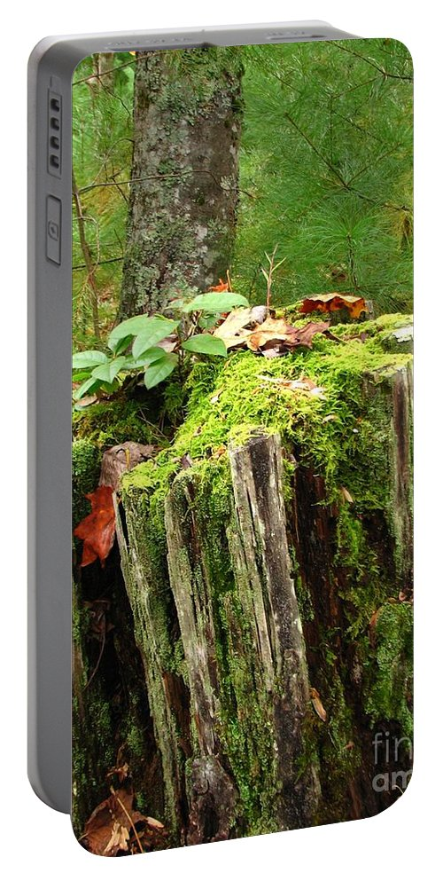 Landscape Portable Battery Charger featuring the photograph Life Goes On by Todd Blanchard