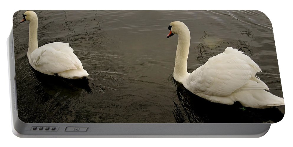 Magnificent Portable Battery Charger featuring the photograph Life Of Swans. by Elena Perelman