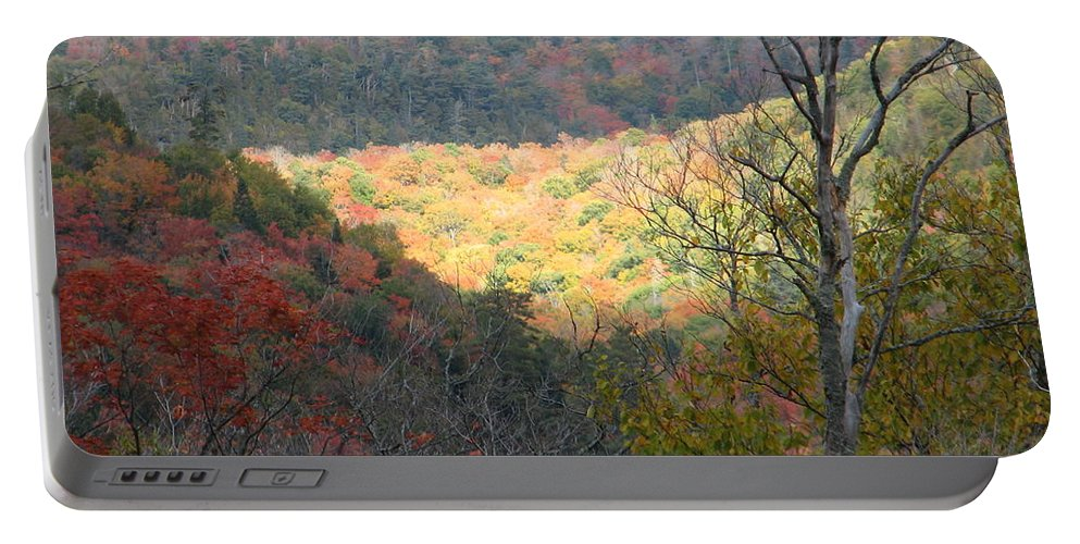 Fall Portable Battery Charger featuring the photograph Light On The Valley by Kelly Mezzapelle