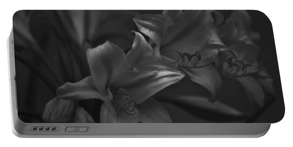 Black And White Photos Portable Battery Charger featuring the photograph Lillies In Black And White by Kathy Kirkland