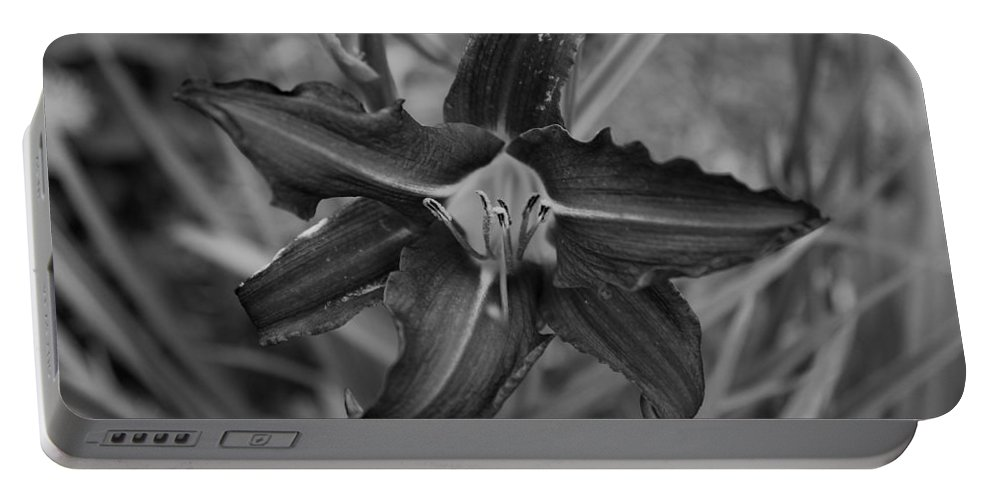 Portable Battery Charger featuring the photograph Lilly by John Bichler