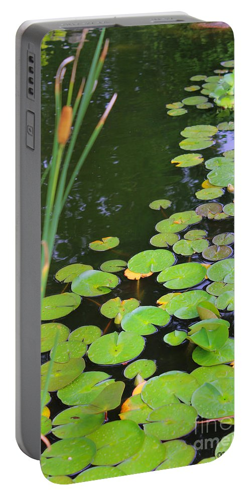 Lillypad Portable Battery Charger featuring the painting Lillypads And Cattails by Corey Ford