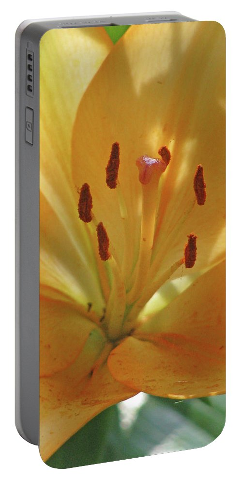Lily Portable Battery Charger featuring the photograph Lily - American Cheerleader 38 by Pamela Critchlow