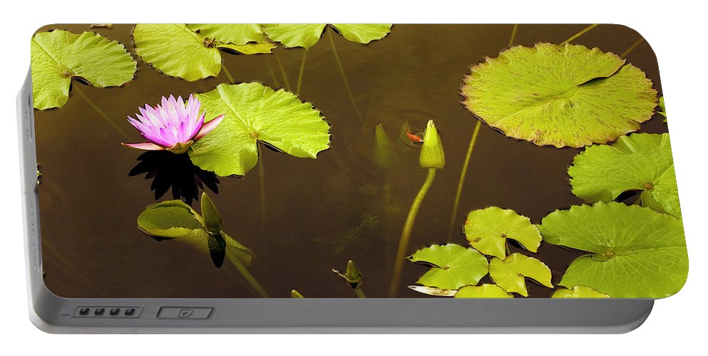 Lily Pad Portable Battery Charger featuring the photograph Lily Pads 1 by Madeline Ellis