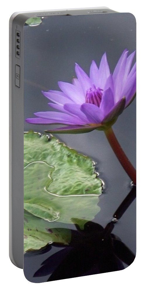 Photograph Portable Battery Charger featuring the photograph Lily Pond by Eric Schiabor