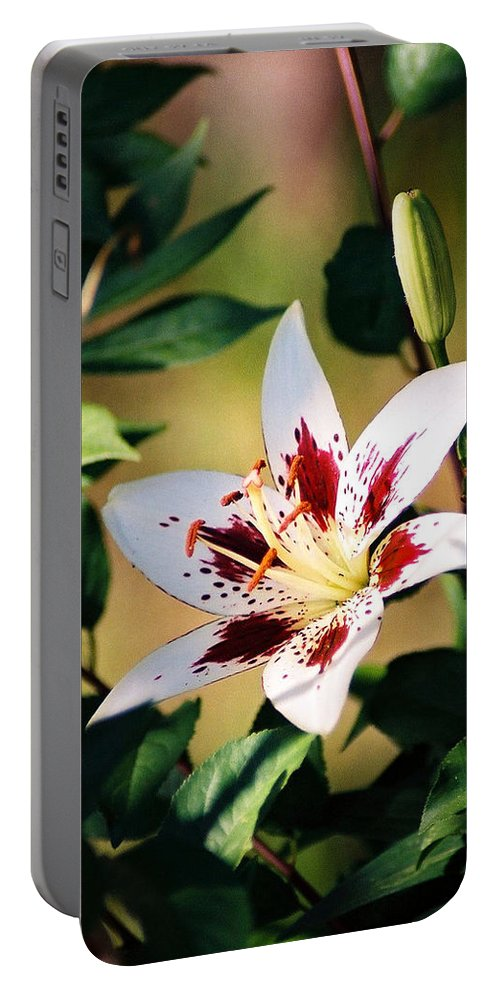 Flower Portable Battery Charger featuring the photograph Lily by Steve Karol