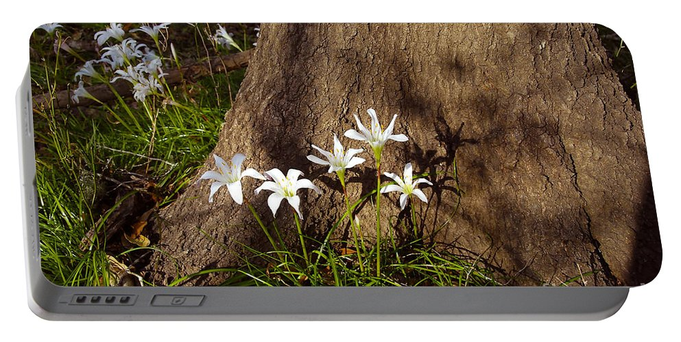 Atamasco Portable Battery Charger featuring the photograph Lily's Atamasco by David Lee Thompson