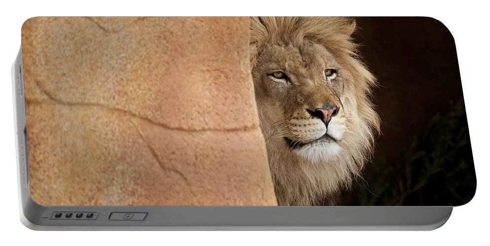 Lion Portable Battery Charger featuring the photograph Lion Emerging  Captive by Steve Gadomski