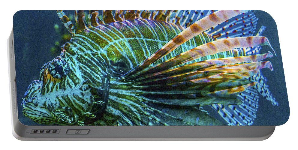 Marine Life Portable Battery Charger featuring the photograph Lion Fish by Craig David Morrison