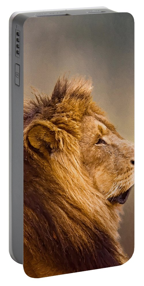 Africa Portable Battery Charger featuring the photograph Lion Head by Maria Coulson
