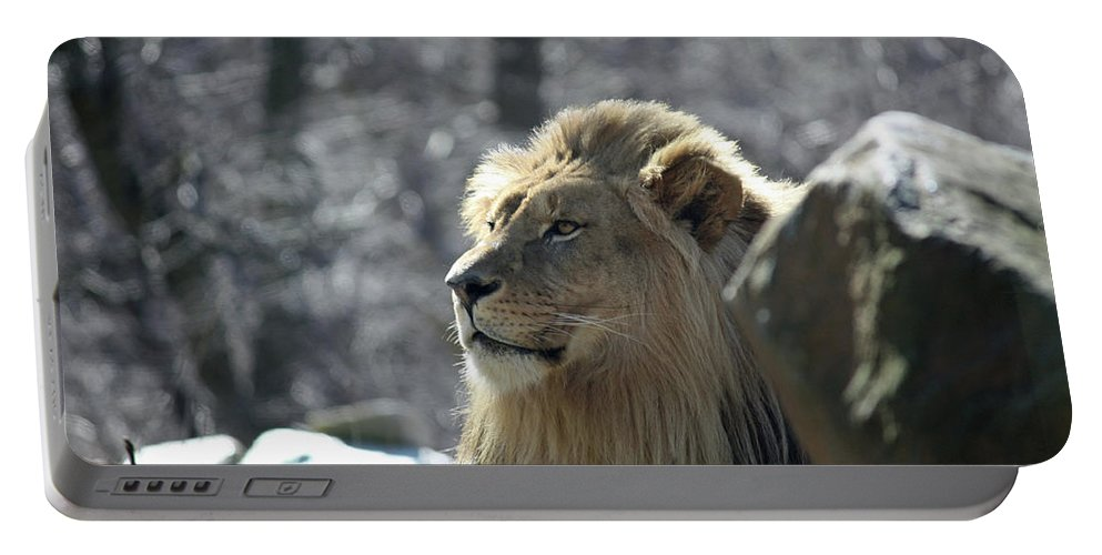 Maryland Portable Battery Charger featuring the photograph Lion King by Ronald Reid