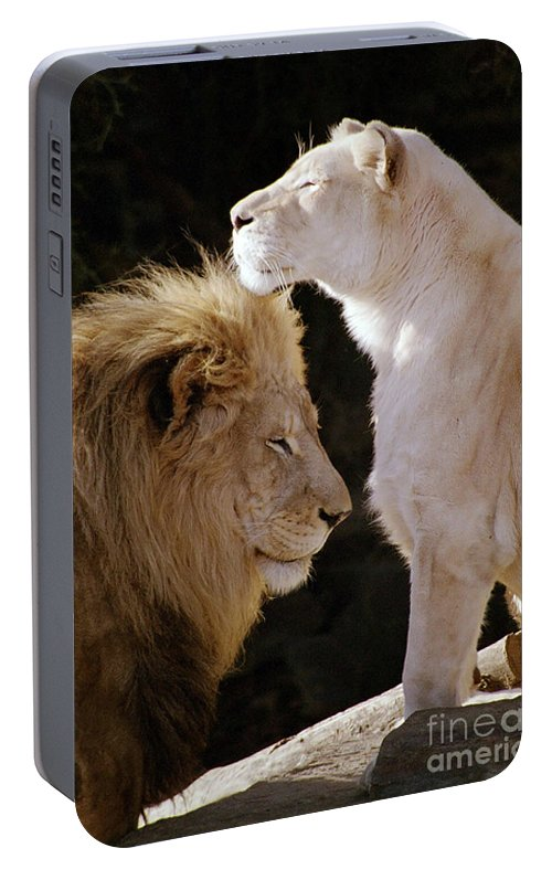 Lion Portable Battery Charger featuring the photograph Lion Yin Yang by Rose De Dan