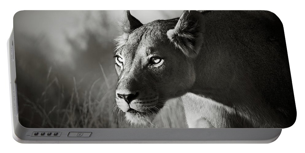 Lioness Portable Battery Charger featuring the photograph Lioness Stalking by Johan Swanepoel