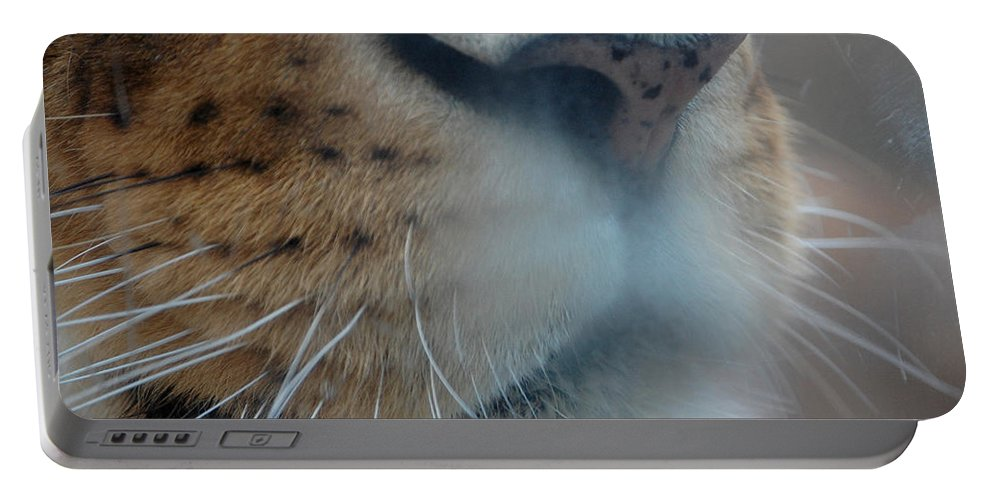 Lion Portable Battery Charger featuring the photograph Lion's Breath by Lisa Kane
