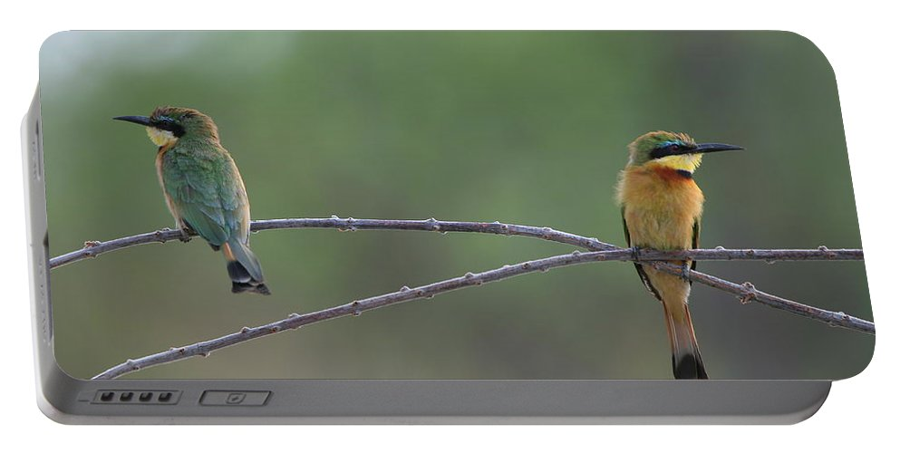 Namibia Portable Battery Charger featuring the photograph Little Bee-eaters by Bruce J Robinson