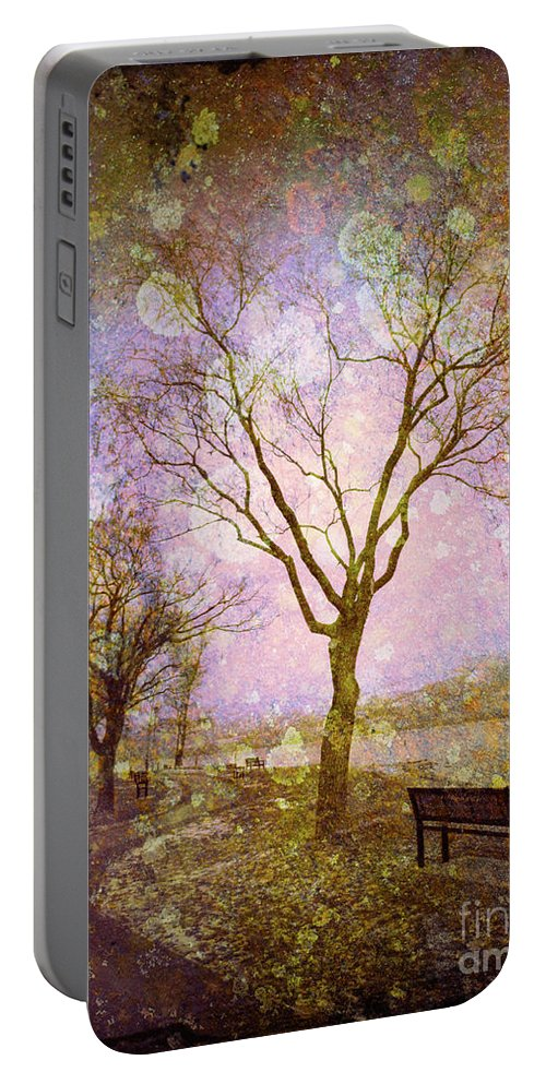 Texture Portable Battery Charger featuring the photograph Little Pathways by Tara Turner