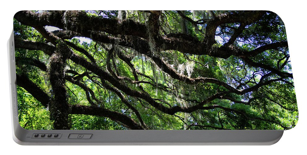 Portable Battery Charger featuring the photograph Live Oak by Angel Bentley