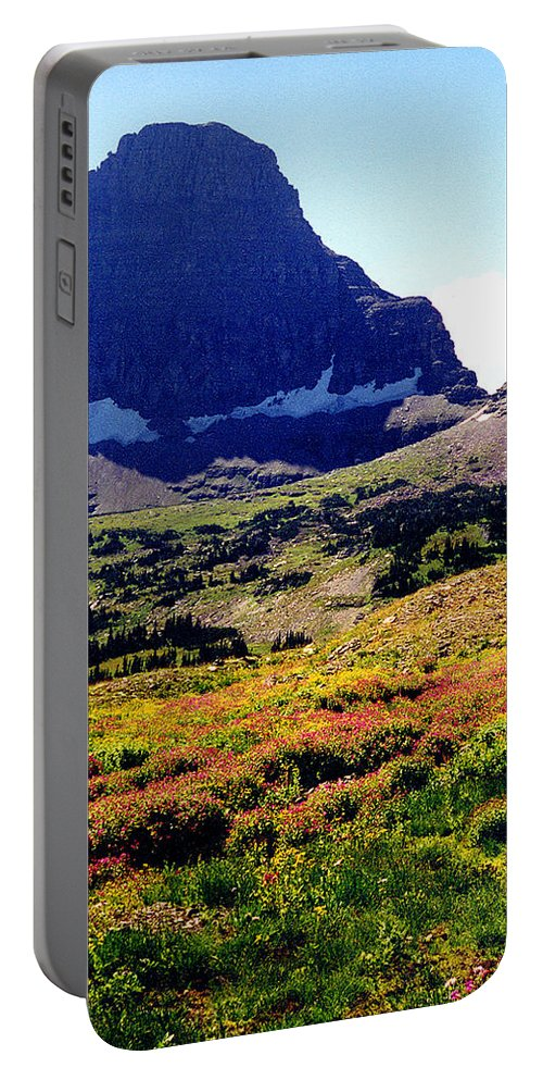 Glacier National Park Portable Battery Charger featuring the photograph Logans Pass In Glacier National Park by Nancy Mueller