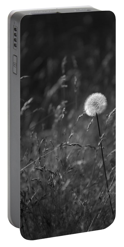 Botanical Portable Battery Charger featuring the photograph Lone Dandelion Black And White by Jill Reger