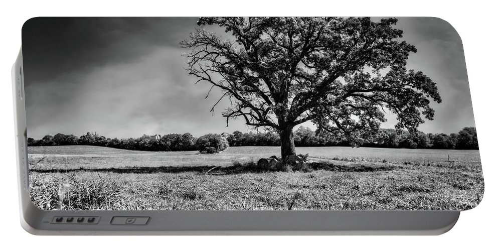 Jennifer Rondinelli Reilly Portable Battery Charger featuring the photograph Lone Oak Tree In Black And White by Jennifer Rondinelli Reilly - Fine Art Photography