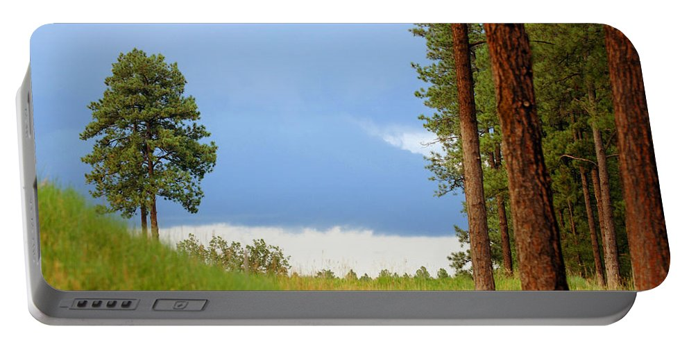 Forest Portable Battery Charger featuring the photograph Lone Pine by Jill Reger
