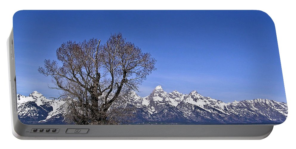 Tree Portable Battery Charger featuring the photograph Lone Tree At Tetons by Douglas Barnett