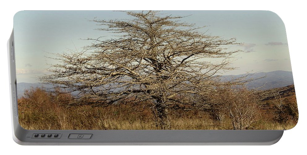 Tree Portable Battery Charger featuring the photograph Lone Tree by Carol Phipps