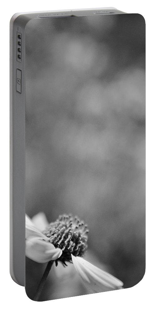 Black And White Portable Battery Charger featuring the photograph Lone Wildflower Black And White by Jill Reger