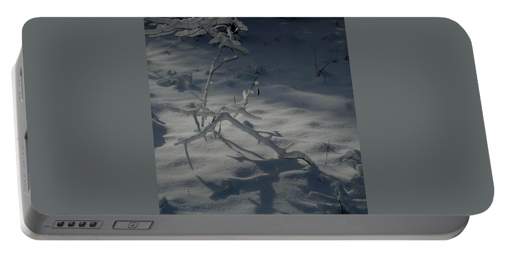 Loneliness Portable Battery Charger featuring the photograph Loneliness In The Cold by Douglas Barnett