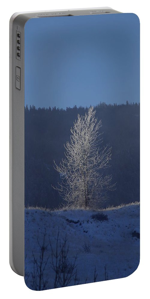 Lonely Portable Battery Charger featuring the photograph Lonely Frosty Tree by Cindy Johnston