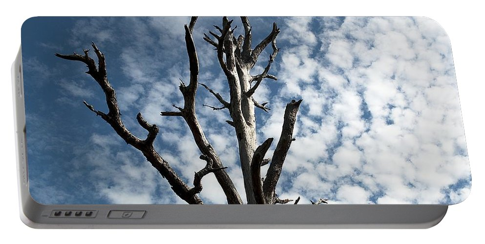 Tree Portable Battery Charger featuring the photograph Lonely Tree by Kenneth Albin