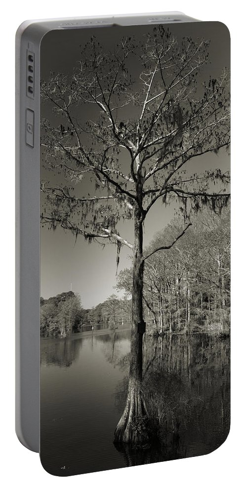 Lake Portable Battery Charger featuring the photograph Lonely Tree by Timothy Markley