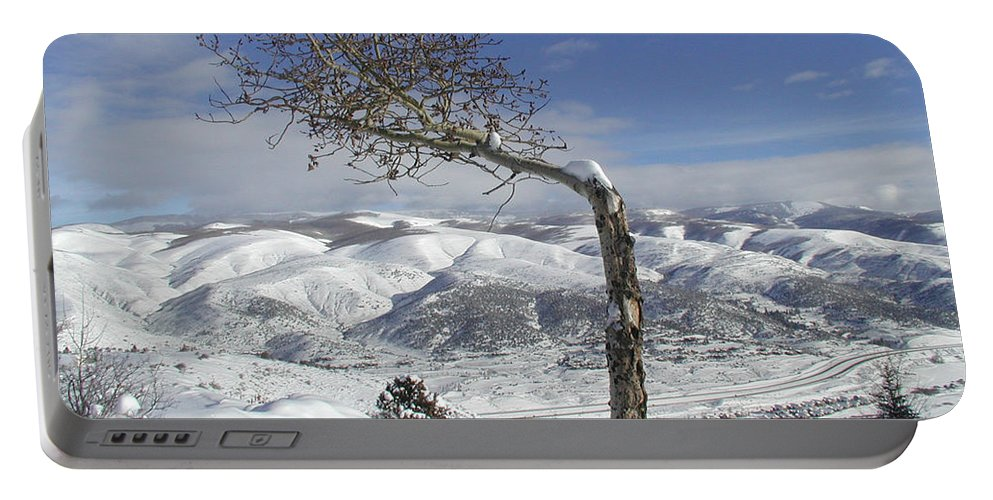 Tree Portable Battery Charger featuring the photograph Lonely Tree by Tom Reynen